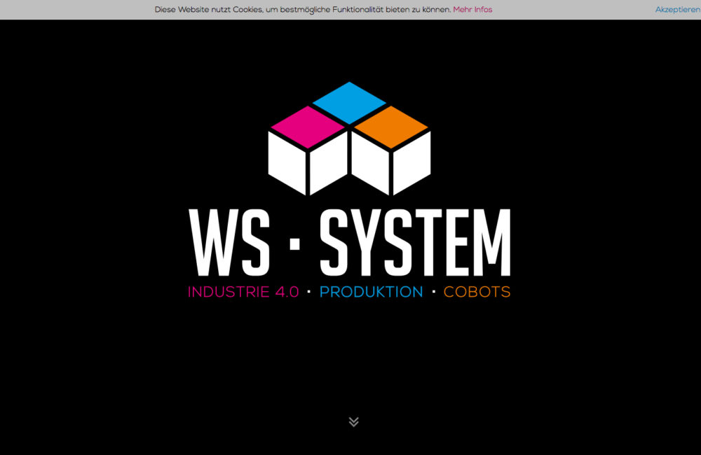 WS-System